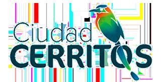 Avanza Ingeniería S.A.S. - Logotipo Ciudad Cerritos